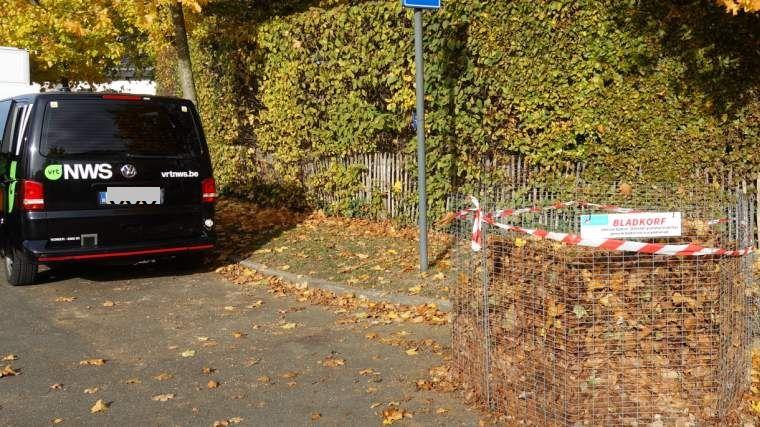 Bladeren esdoorns Louis Callebautstraat vrt-nieuws